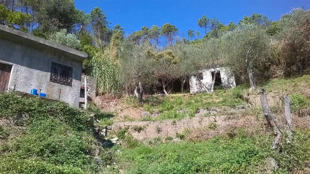 Rustico casale, Monterosso Al Mare, da ristrutturare