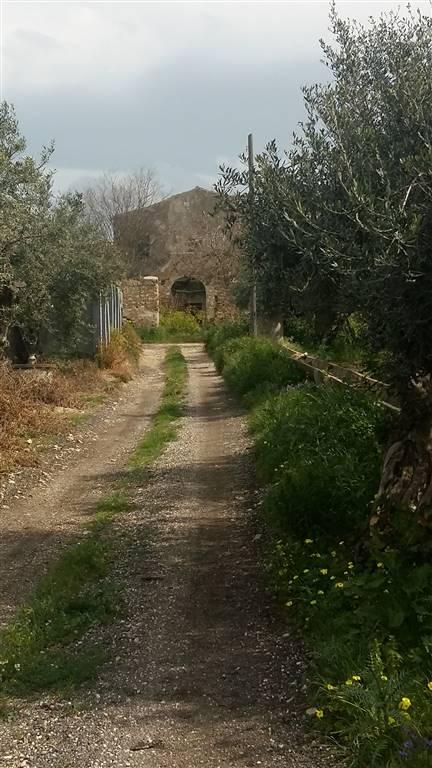 Terreno agricolo, Sciacca