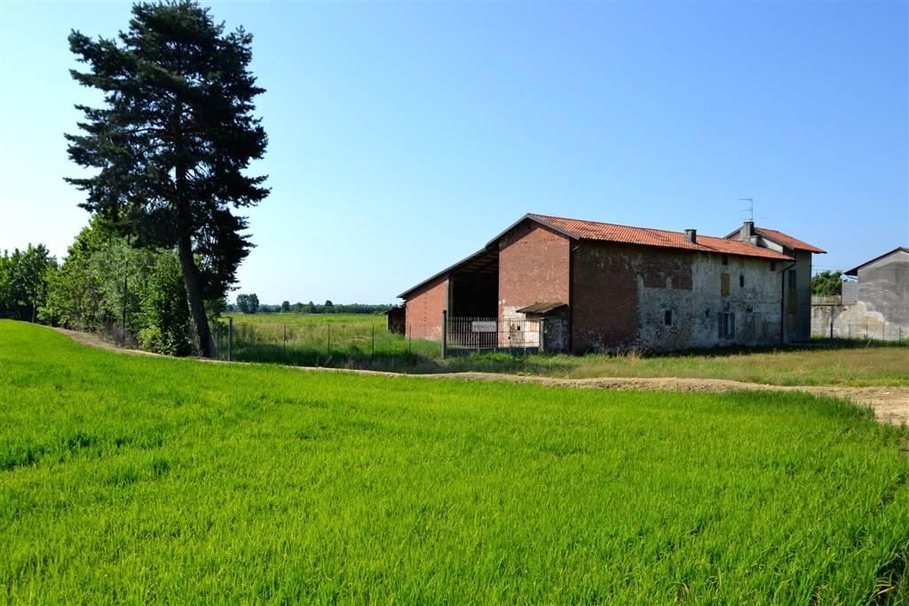 Casa singola, Salussola, da ristrutturare