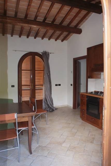 Appartamento indipendente, Montescudaio, abitabile