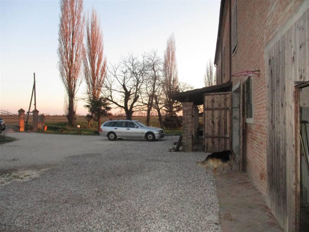 Rustico / Casale in vendita a Masi Torello, 6 locali, prezzo € 248.000 | CambioCasa.it