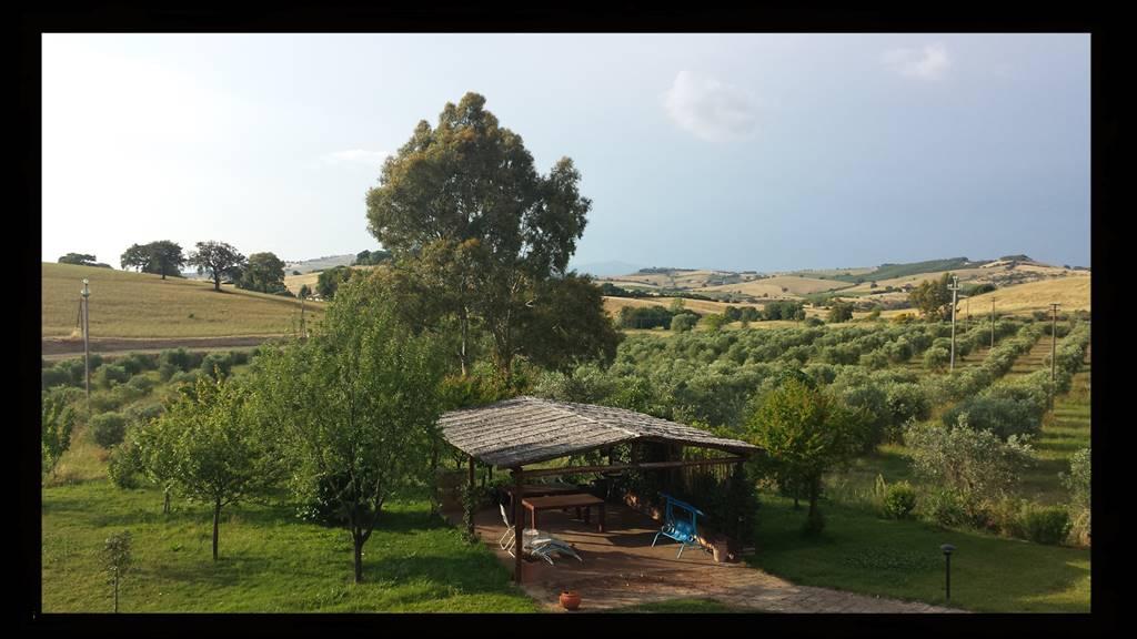Azienda agricola, Alberese, Grosseto, ristrutturata
