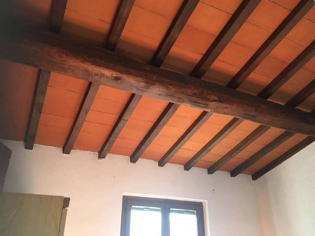 Foto ID 13390201