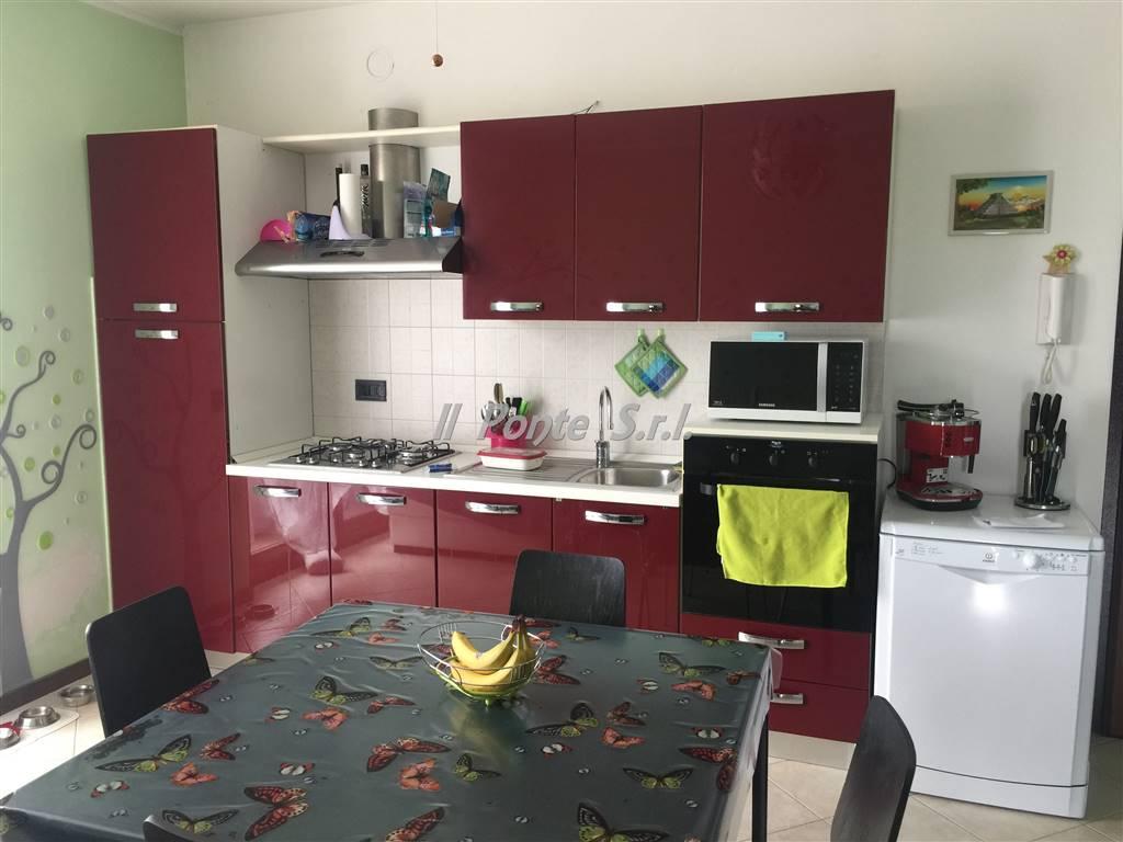Vendita Bilocale Appartamento Cilavegna   181147