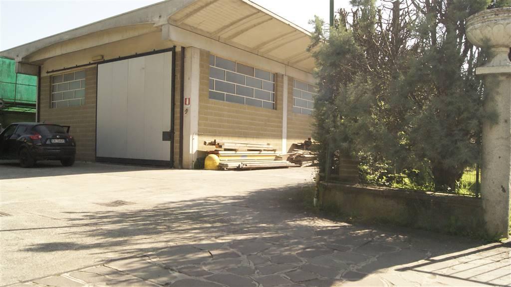 Laboratorio in vendita a Cologno al Serio, 9999 locali, prezzo € 215.000 | CambioCasa.it
