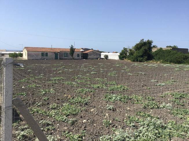 Terreno Agricolo in vendita a Butera, 9999 locali, zona Località: DESUSINO, prezzo € 99.000   PortaleAgenzieImmobiliari.it