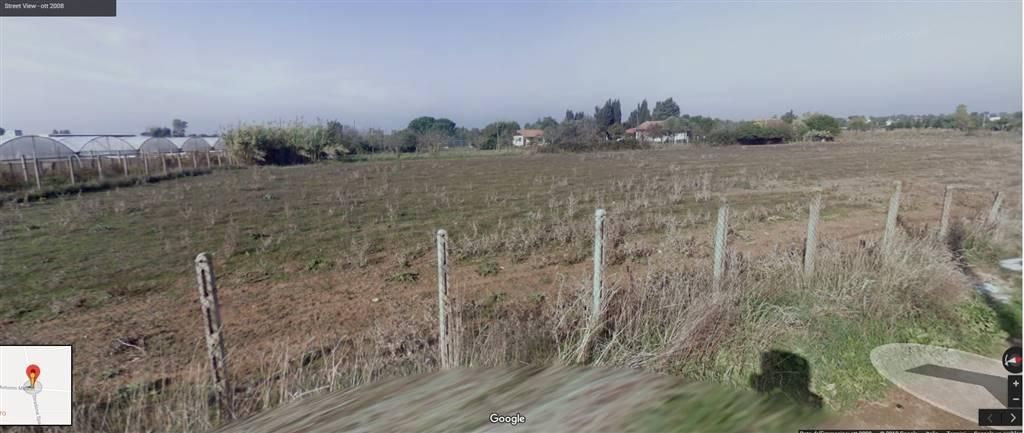 Terreno Agricolo in Vendita a Anzio