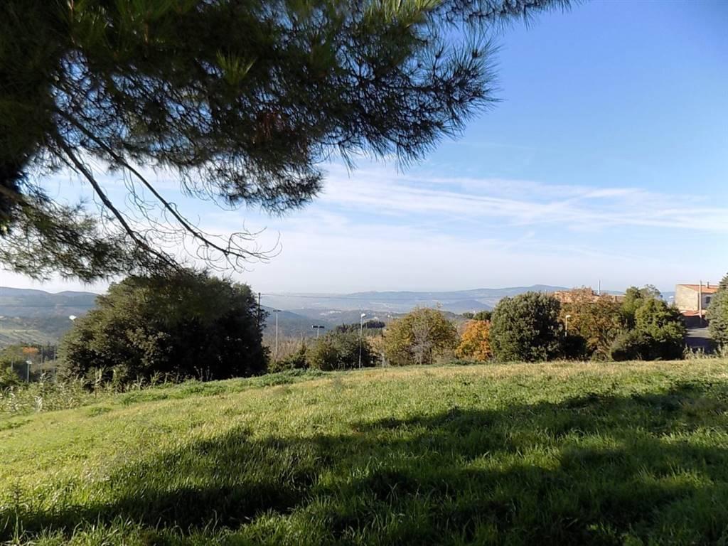 Terreno edificabile a CASTELLINA MARITTIMA
