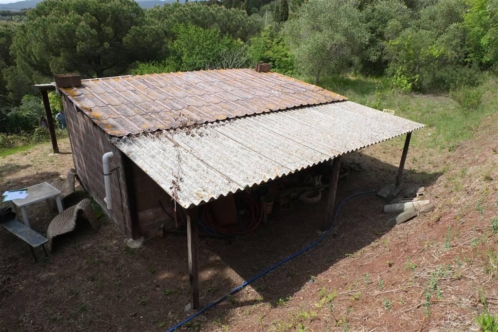 Annesso agricolo a ROSIGNANO MARITTIMO