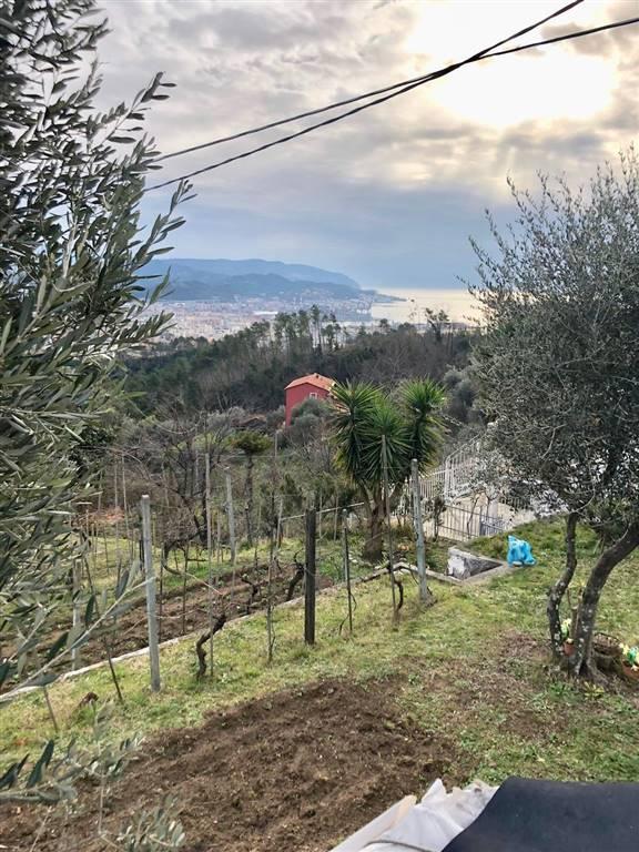 Casa semi indipendente, Marinasco,sarbia, La Spezia, ristrutturato