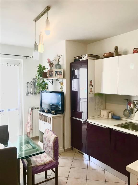 Appartamento indipendente, Caniparola, Fosdinovo, seminuovo