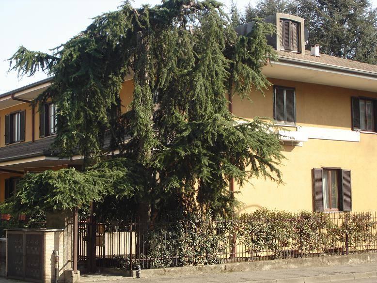 Appartamento indipendente in Via Ciro Menotti 18, Muggio'