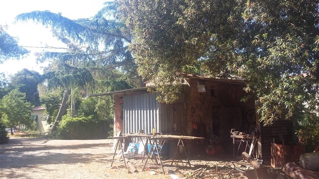 Azienda agricola in Campagna Limitrofa\ Costa Est, Riotorto, Piombino