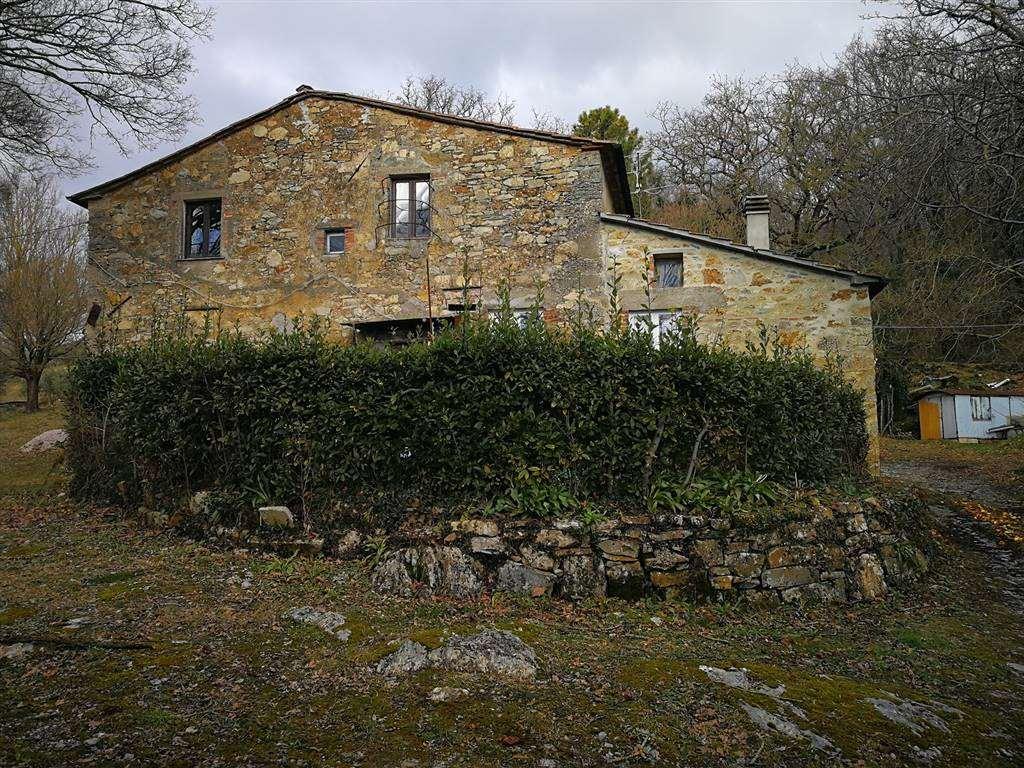 Rustico casale, Sasso Pisano, Castelnuovo Di Val Di Cecina, abitabile