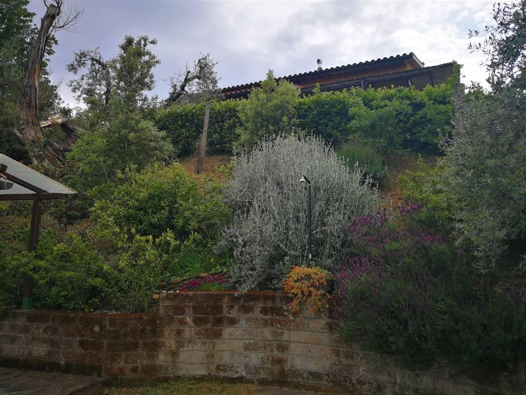Rustico casale in Campagna Limitrofa...vicino  Mare, Marina Di Castagneto Donoratico, Castagneto Carducci