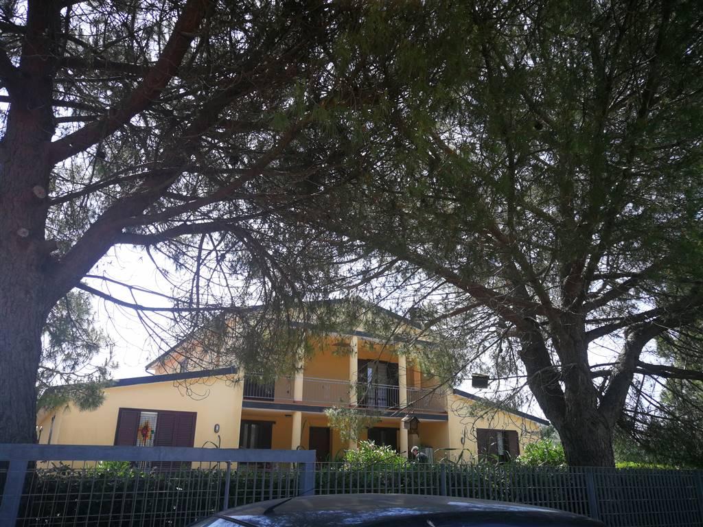 Rustico casale in Perelli, Viale Della Geodetica, Riotorto, Piombino