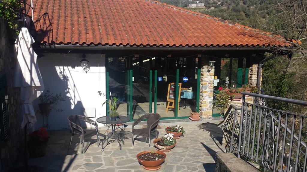 Albergo in vendita a Perinaldo, 20 locali, zona neo, prezzo € 775.000 | PortaleAgenzieImmobiliari.it