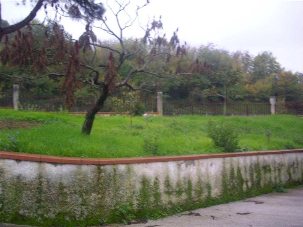 Affitto casa singola montemiletto abitabile piano terra for Siti di case in affitto