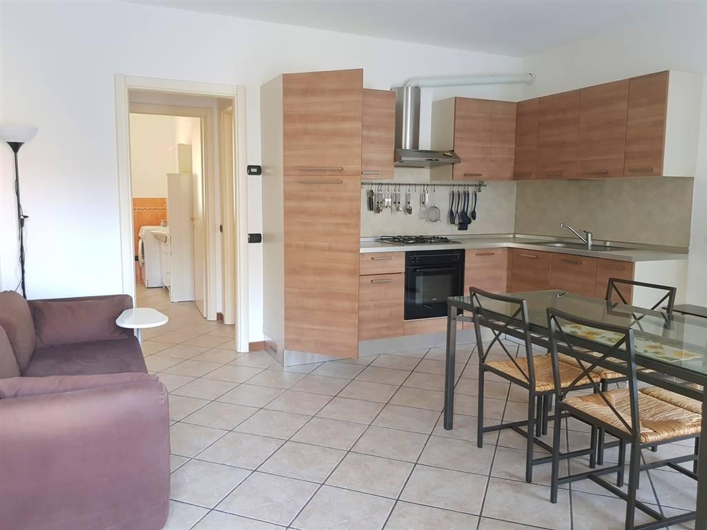 Appartamento in affitto a Gallarate, 2 locali, zona Zona: Madonna in Campagna, prezzo € 500 | CambioCasa.it