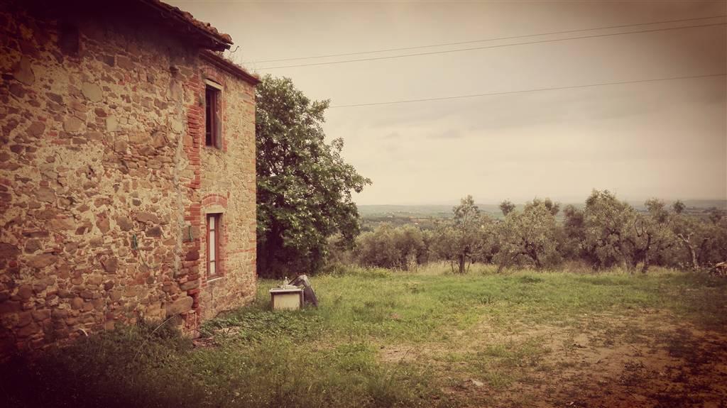 Foto - Rif. 272