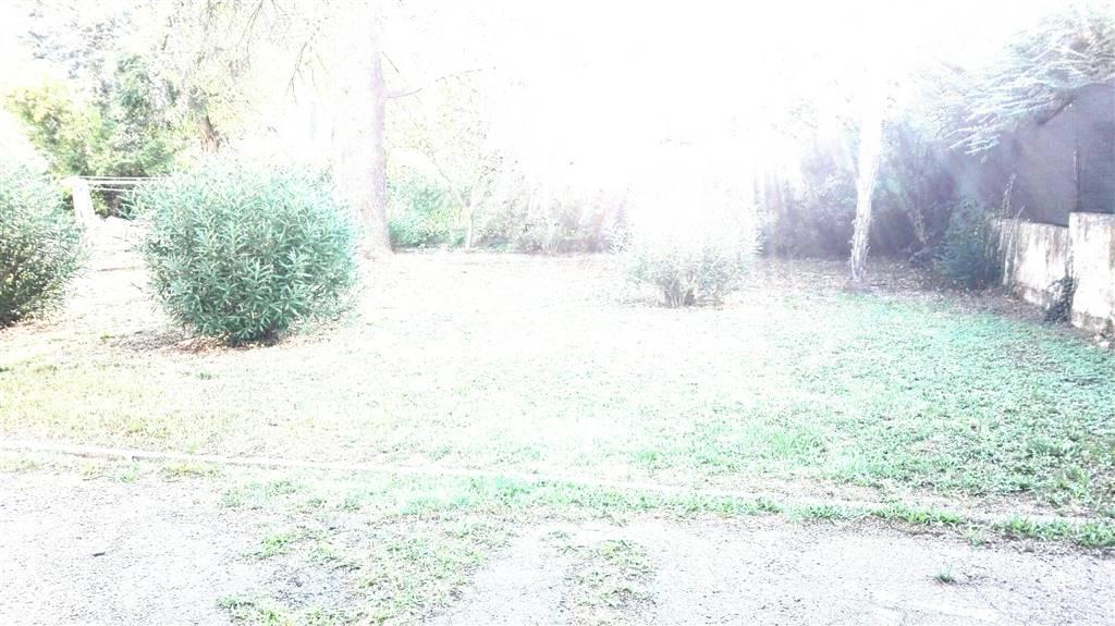 giardino condominiale - Rif. 294