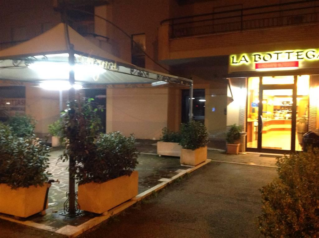 Negozio in Via Delle Camelie, Latina Scalo, Latina