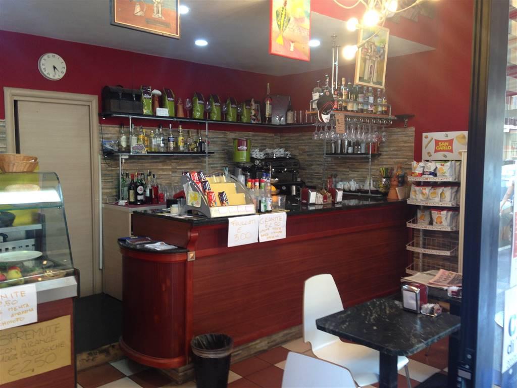 Bar, Città Studi, Lambrate, Udine, Loreto, Milano