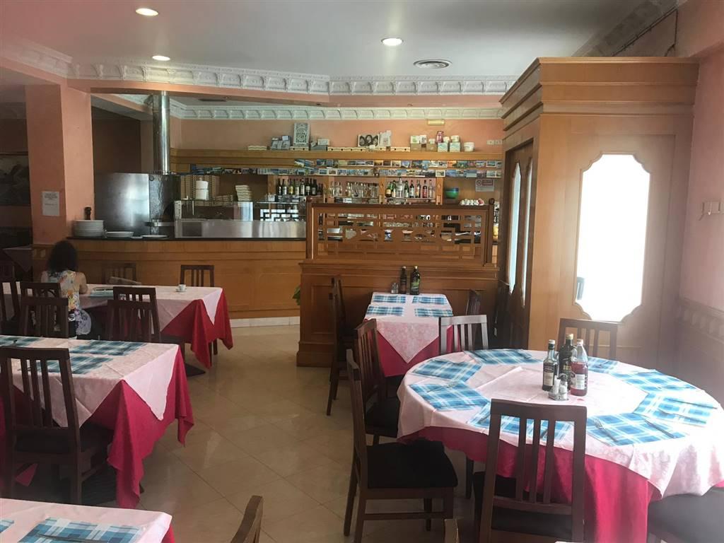 Ristorante, Città Studi, Lambrate, Udine, Loreto, Milano