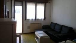 Quadrilocale, Rovigo, abitabile