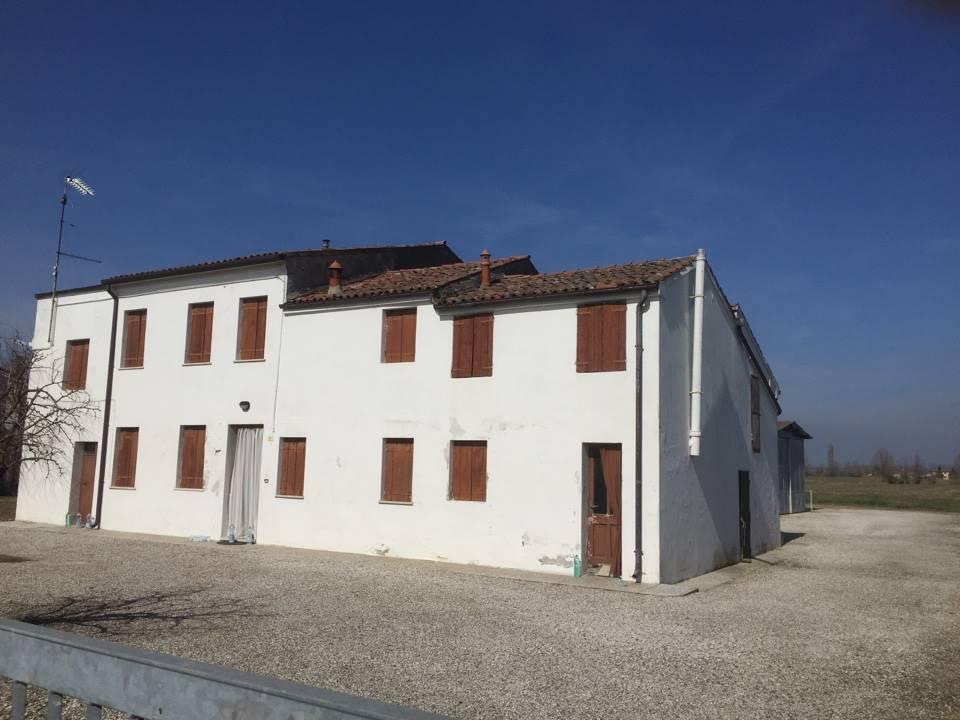Casa singola, Saguedo, Lendinara, da ristrutturare