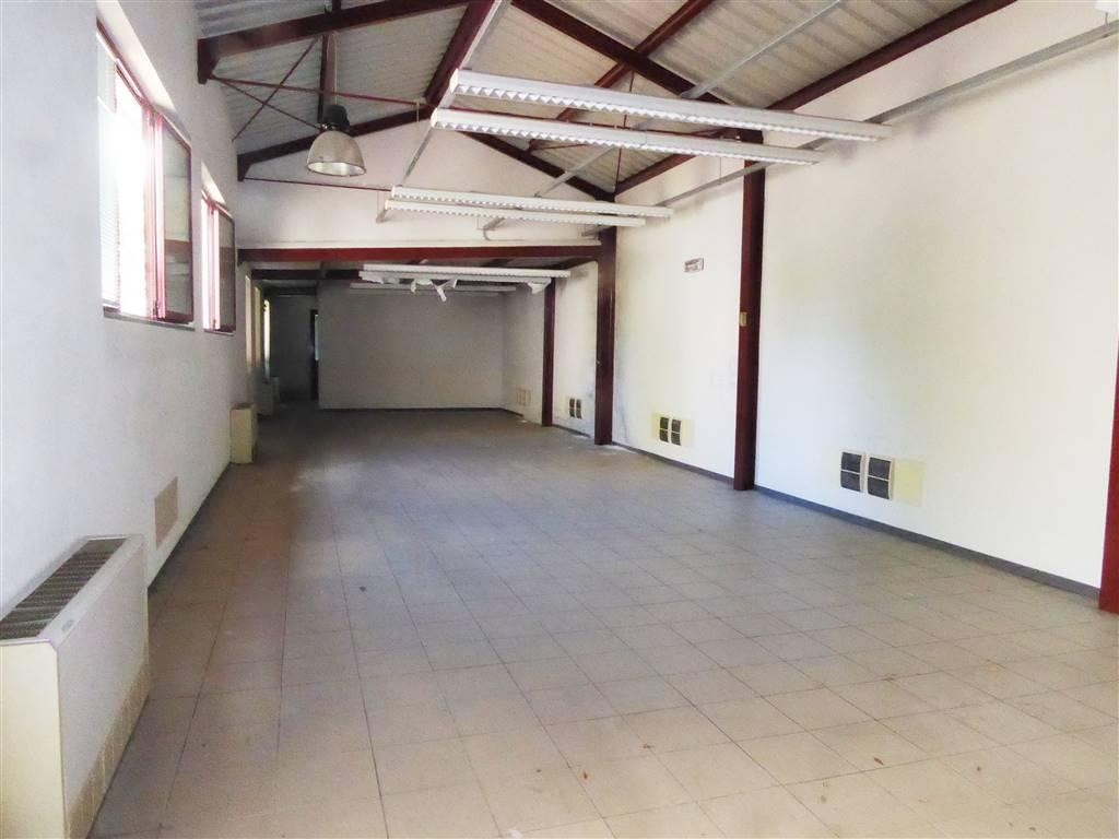 Capannone in affitto a Firenze, 3 locali, zona Zona: 1 . Castello, Careggi, Le Panche, prezzo € 15.000 | CambioCasa.it