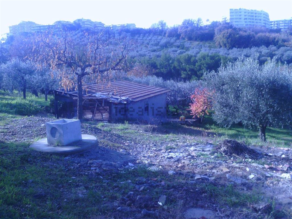 Foto terreno - casale