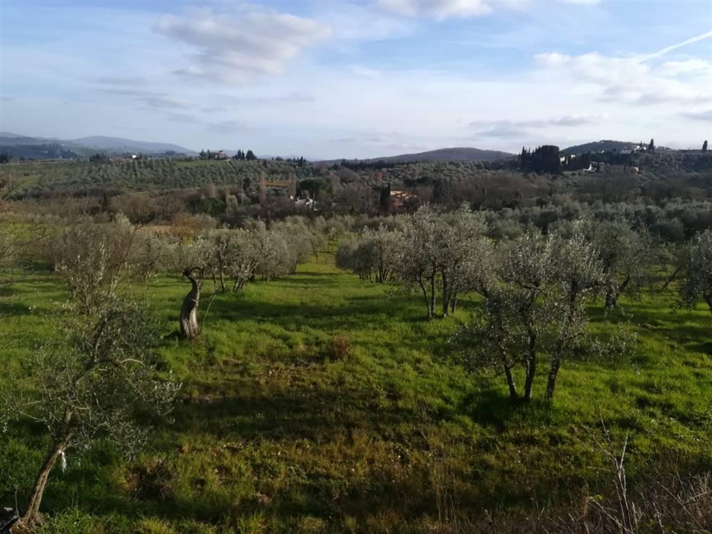 Terreno agricoloaSCANDICCI