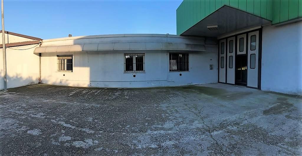 Immobile Commerciale in affitto a Castel d'Ario, 6 locali, zona Zona: Villa, Trattative riservate | CambioCasa.it