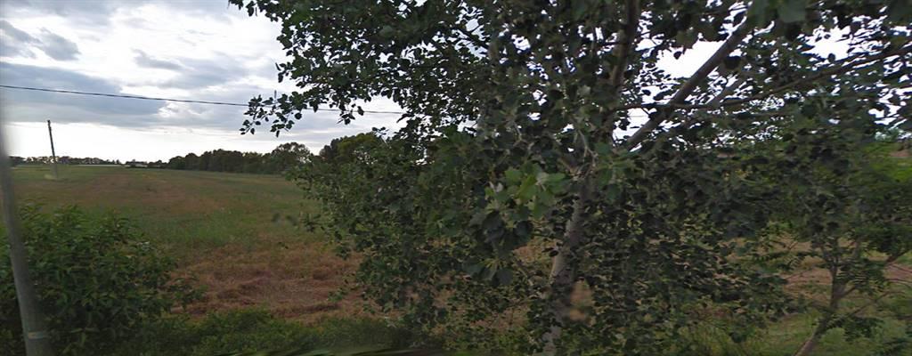 Terreno agricolo, Borgo Grappa, Latina