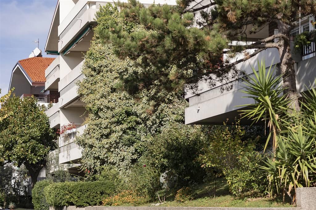 Appartamento, Zone Di Pregio, Trieste, in ottime condizioni