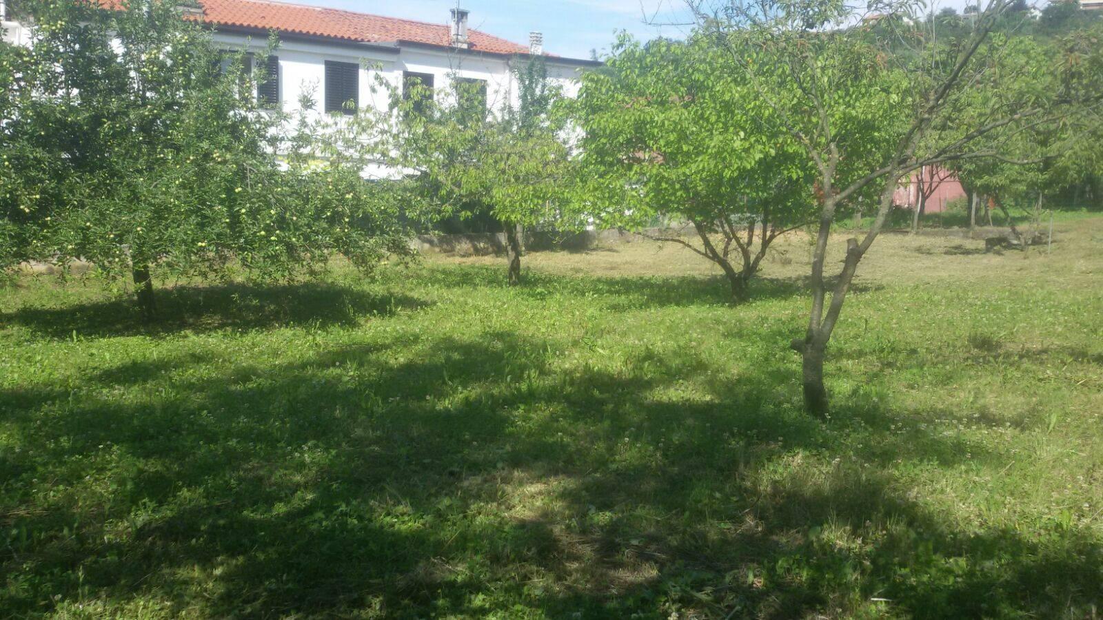 Terreno Edificabile Residenziale in vendita a Muggia, 9999 locali, prezzo € 175.000 | CambioCasa.it