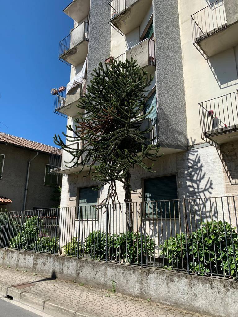 Appartamento in vendita a Cilavegna, 3 locali, prezzo € 65.000 | CambioCasa.it