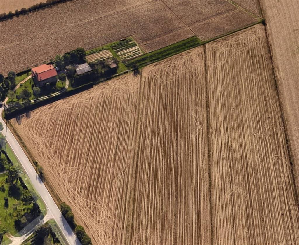 Terreno agricolo a VENEZIA