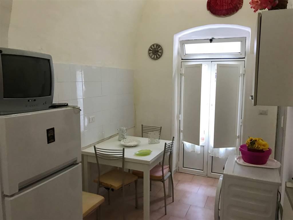 MADONNELLA (VIA RAGUSA) Ampio mono vano open space con angolo cottura e bagno con box doccia, cortile di proprietà condiviso, volte alte ed arredato,