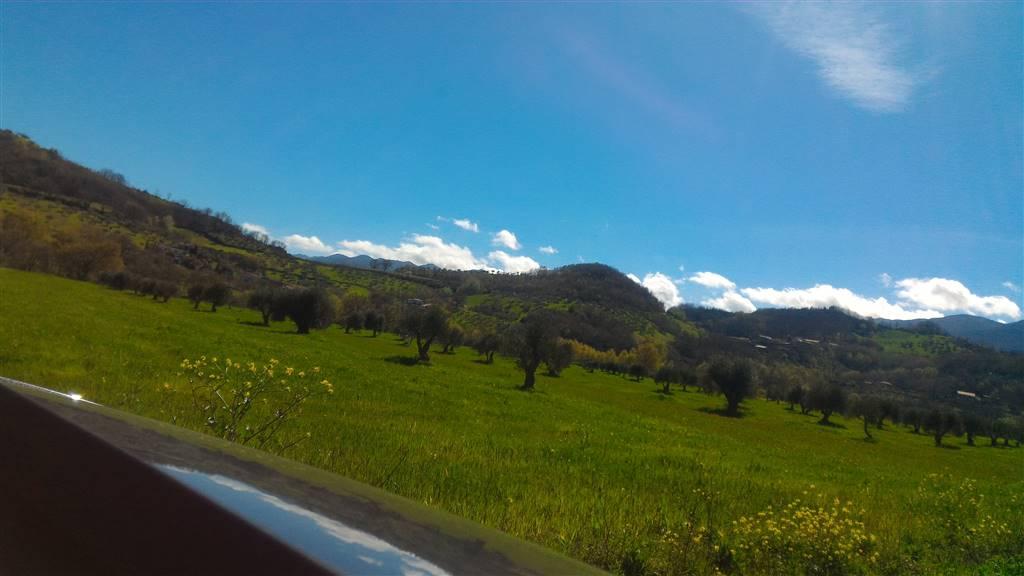 Terreno Agricolo in vendita a Montalto Uffugo, 9999 locali, Trattative riservate | CambioCasa.it