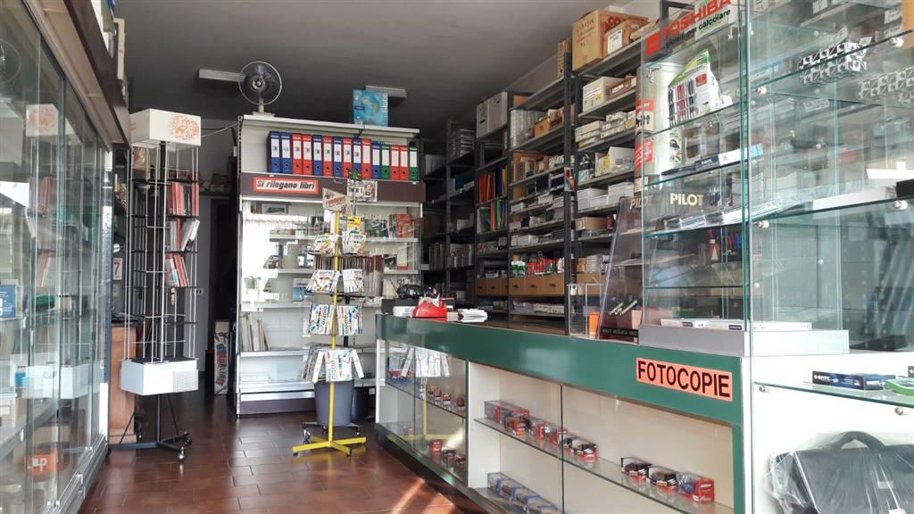 Locale commerciale, Nogara, abitabile