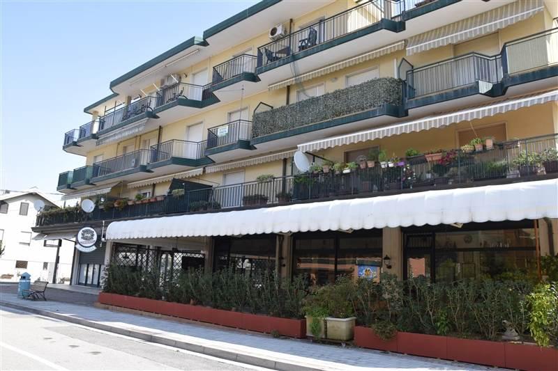 JESOLO Appartamento 1 camera in Pineta Foto 1