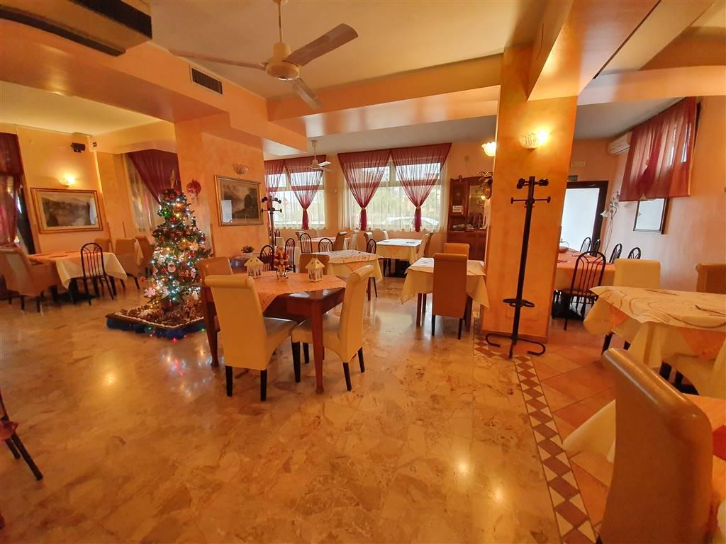 JESOLO Affitto attività di Pizzeria Ristorante Foto 3