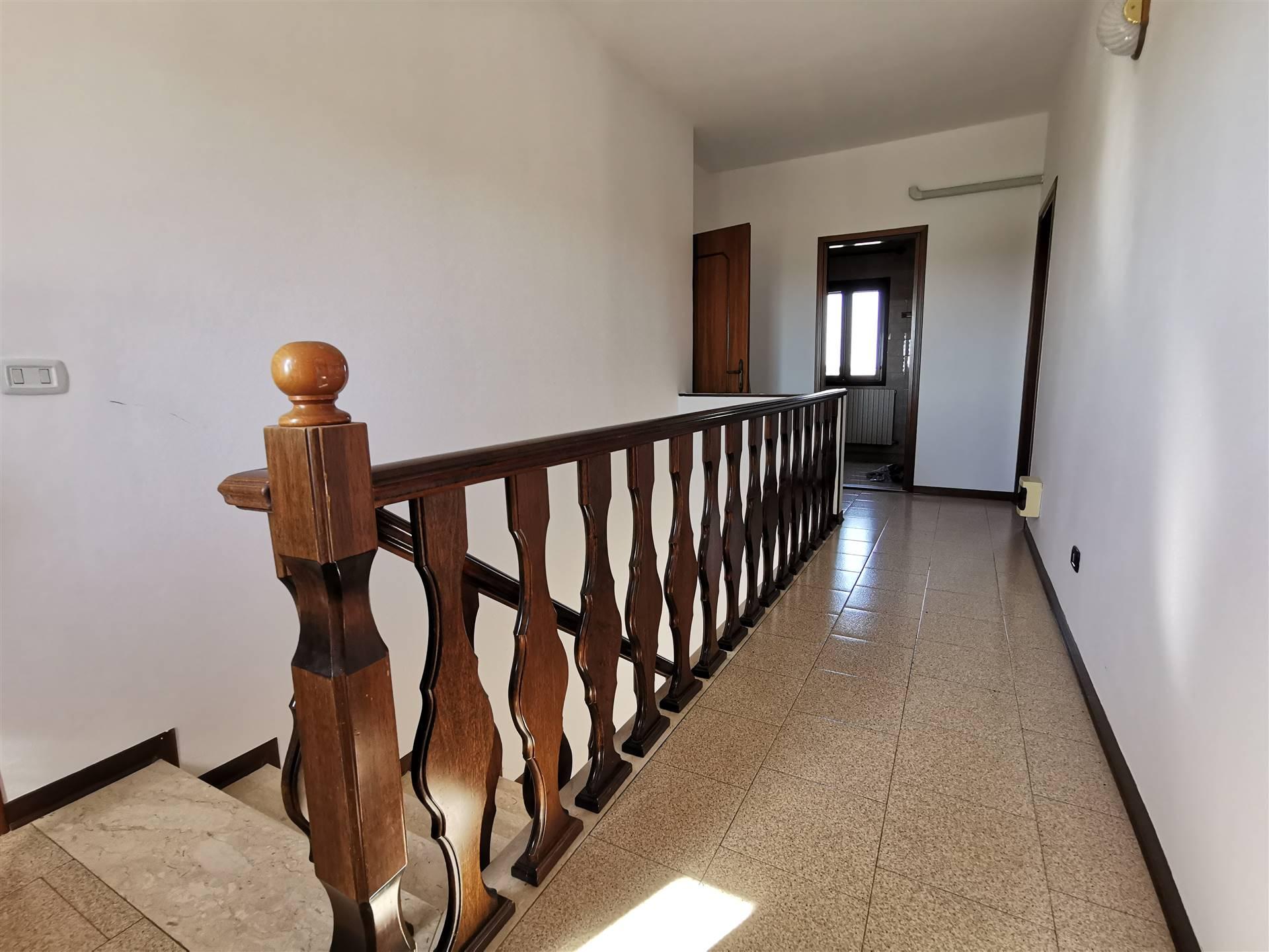 JESOLO CASALE doppia abitazione con terreno viticolo Foto 13