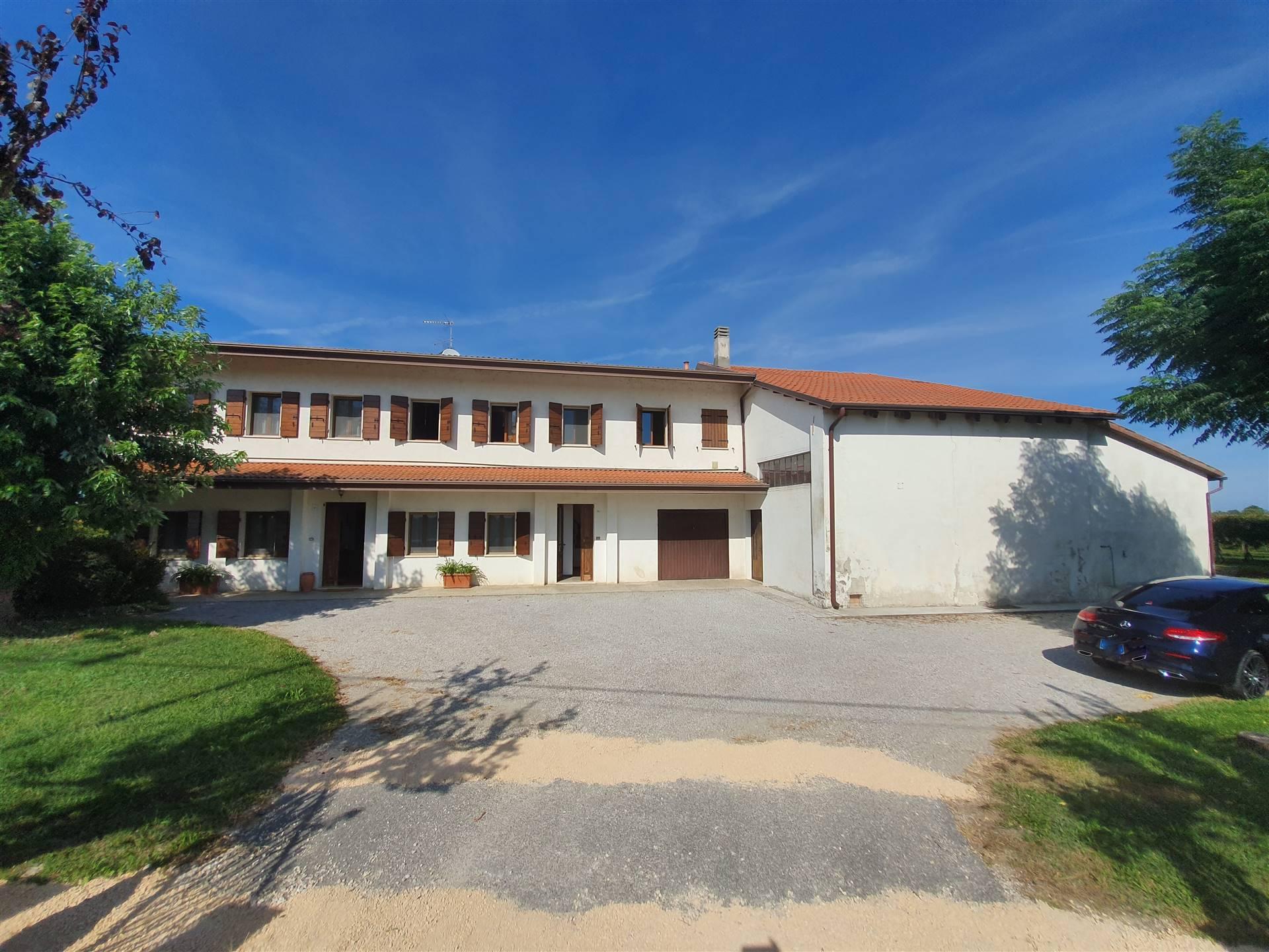 JESOLO CASALE doppia abitazione con terreno viticolo Foto 7