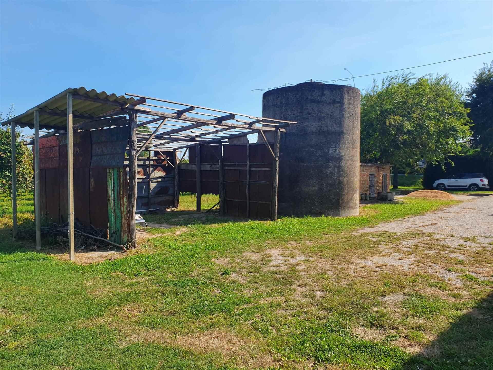 JESOLO CASALE doppia abitazione con terreno viticolo Foto 3