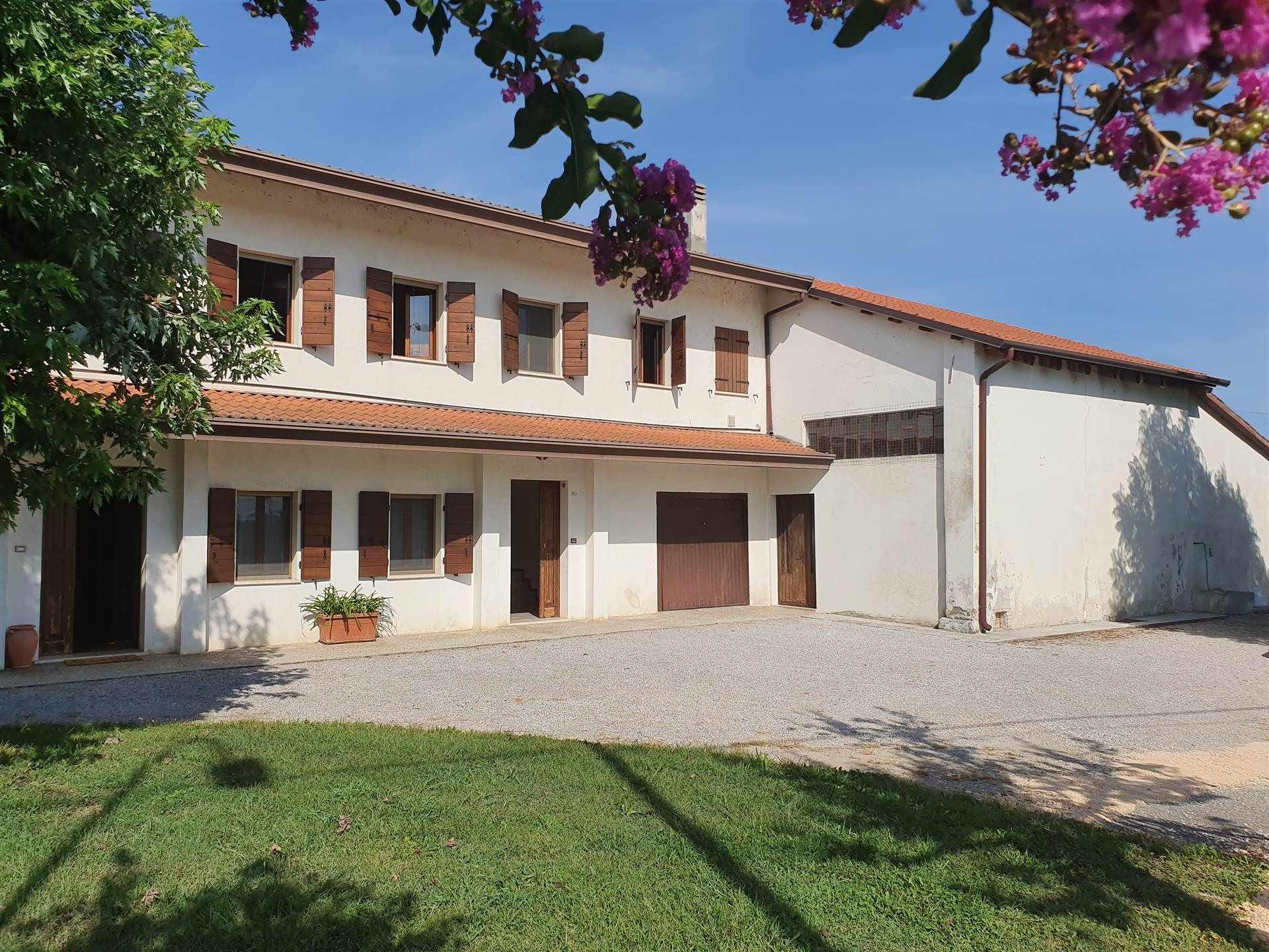 JESOLO CASALE doppia abitazione con terreno viticolo Foto 2