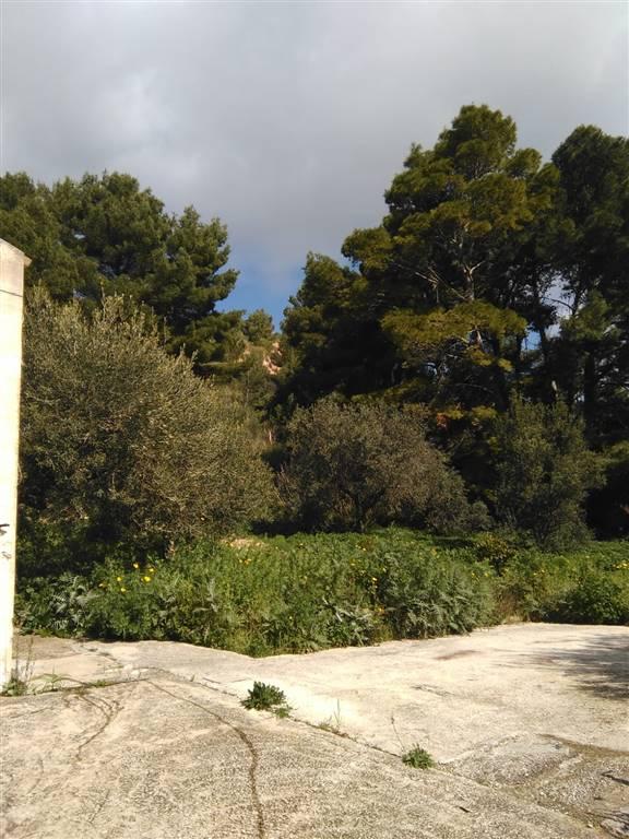 Magazzino in affitto a Valderice, 2 locali, zona Zona: San Marco, prezzo € 250 | CambioCasa.it