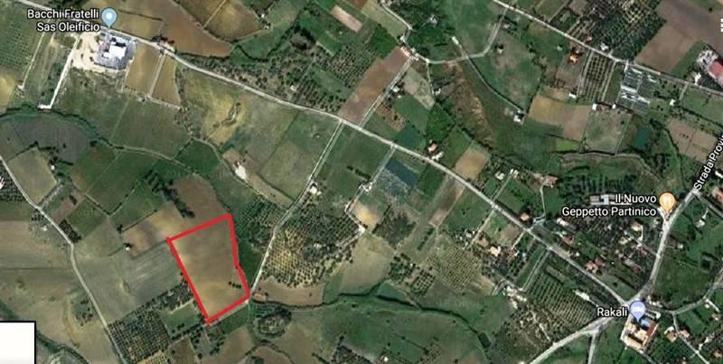 Terreno Agricolo in vendita a Partinico, 9999 locali, prezzo € 30.000 | CambioCasa.it